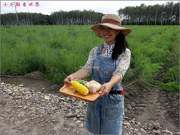 川野農場 DIY採玉米 (20).JPG