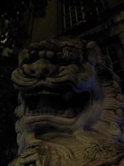 Stone Lion (failing_angel) Tags: 181116 london cityofwestminster chinatown lion gerrardstreet