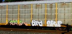 kermo - bird - skip (timetomakethepasta) Tags: kermo ars bird skip unfinished freight train graffiti art autorack