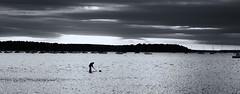 The bait digger. (Greatdog) Tags: dorset poole pooleharbour landscape blackandwhite