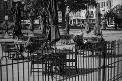 Reading Room (votsek) Tags: 2016 worcester plaza townhall fence tables chairs reading umbrella d750 nikon nikond750