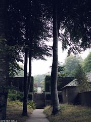 Autumn Garden (peterphotographic) Tags: pa141197cb2cinemaedwm olympus em5mk2 microfourthirds peterhall castledrogo dartmoor devon england westcountry uk britain nationaltrust nt garden autumn mist misty damp grey tree formalgarden prime