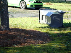 Fallen Trash Can. (dccradio) Tags: lumberton nc northcarolina robesoncounty hurricanematthew hurricane matthew stormdamage aftermath recovery tree trees greenery fallen downed trashcan garbagecan ford mustang green
