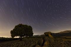 Night of stars (Rafael Dez) Tags: espaa alava laguardia rafaeldez paisaje noche nocturna arboles piedras lahechicera estrellas