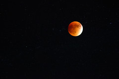 Blood Moon (Paige_Terhune) Tags: red landscape nature comment first follow like space sky stars night bloodmoon moon