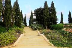 Jardim no Teatro romano (Vera Schuck Paim) Tags: teatro romano ruinas em cartagena espanha spain runa romanas colunas mrmore rosa jardins caminhos reconstruoes