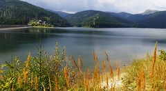 Bolboci lake (sandaodiatiu) Tags: waterstorage lake dambovita cabanabolboci bucegimountains dam