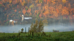 Country Mist (bprice0715) Tags: canon canoneos5dmarkiii landscape landscapephotography nature naturephotography beautiful beauty beautyinnature barn autumn fall fallfoliage foliage mist colorful colors orange green canon5dmarkiii country countryside brilliance warmth atmosphere