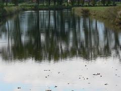 longer shadows, shorter days (achatphoenix) Tags: water waterscape wasser eau aqua eastfrisia ostfriesland view bridge road roadtrip rheiderland rural reflection spiegelung autumn sky clouds nuages