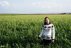 Meadows (lagunadani) Tags: meadow prado trigal cultivo cereales retrato sevilla loradelrio elpriorato sonya7 paisaje verde