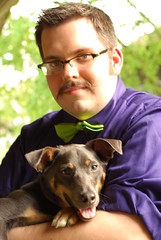 Day 1 (Dok.Crush) Tags: puppy mutt may moustache german facialhair mustache pinscher moustachemay germanpinscher