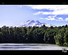 Mountain over Forest (tomraven) Tags: sky lake snow forest volcano peaks ruapehu mpountain tomraven aravenimage rememberthatmomentlevel1 rememberthatmomentlevel2 q22013