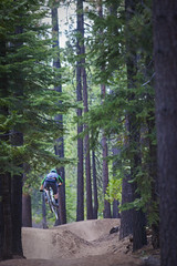 Corral Trail (TAMBA Tahoe) Tags: california mountain mountains bike track ride nevada trails tahoe sierra trail single biking area recreation rider association tamba