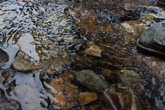Creek Run (szapucki) Tags: texture water creek rocks stream ripples earthtones