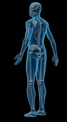 Orthopedic Treatments (orthopedic Treatments) Tags: orthopedic treatments