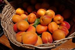 Apricots (Monkeywrencher) Tags: apricot fruit