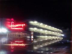 Late check in (BLACK EYED SUZY) Tags: flamingo hotel night lights hipstamatc afterlight retro motel neon