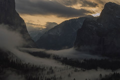 Valley Fogrise (Jake Glass) Tags: fog sunrise yosemitevalley