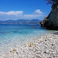 Buongiorno, oggi vi portiamo sulla spiaggia della #padulella a #portoferraio, mica male eh . Continuate a taggare le vostre foto con #isoladelbaapp il tag delle vostre vacanze all'#isoladelba. http://ift.tt/1NHxzN3 (isoladelbaapp) Tags: isoladelba elba visitelba portoferraio porto azzurro capoliveri marciana marina di campo rio
