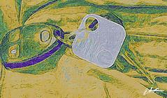 "Trackable keychain using ""Tile"" IPhonography..... (kudzu 70) Tags: brushstroke tooncamera iphone iphoneography keys keychain tile marietta ga usa"