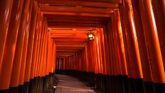 Pray for Light (carolina_sky) Tags: fushimiinari toriigates kyoto japan shrine temple sun red lantern pentaxk1 pentax2470mm shinkansen