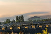 DSC_ 0014 -Tops of the morning... . (SWJuk) Tags: swjuk uk unitedkingdom gb britain england lancashire burnley home houses terracedhouses rooftops chimneypots hill morning early mist misty burnleywood cliviger light sunlight naturallight clouds 2016 aug2016 nikon d7100 nikond7100 18300mm rawnef lightroom outdoor