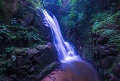 Fairy Fall (Yohsuke_NIKON_Japan) Tags: d600 nikon sanin unnan fall waterfall nature beautyinnature 1635mm longexposure