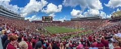IMG_0070 (dwhart24) Tags: florida fl state seminoles doak campbell stadium tallahassee football david hart iphone panorama