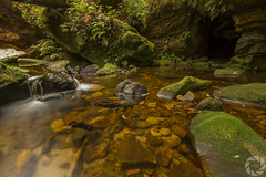 Small Creek under the walkway (pradeep2471989) Tags: bushwalking grandcanyonwalk blackheath australia naturelandscape naturewalk hikingtrail landscapephotography