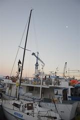 Porticello: sera d'agosto (costagar51) Tags: porticello santaflavia palermo sicilia sicily italia italy mare anticando
