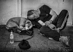 let sleeping dogs lie (Daz Smith) Tags: dazsmith canon6d bw blackwhite blackandwhite bath city streetphotography people candid canon portrait citylife thecity urban streets uk monochrome blancoynegro dog man asleep sleeping