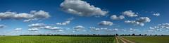 a glorious summer (++sepp++) Tags: bayern deutschland hochfeld lechfeld sommer lnder graben de bavaria germany summer landschaft landscape panorama clouds wolken cumulus kumuluswolken blue blau sonnig sunny august