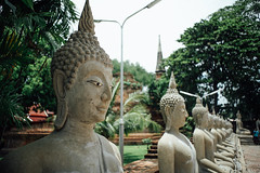 Ayyuthaya (hopeflowpj) Tags: bangkok ayyuthaya pj juplo livefolk temples thailand travel elephant vsco wat yai chai mongkhon buddhist temple