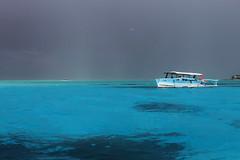 IMG_0190 (Sergiojoshua) Tags: bora borabora polynesia polinesia polinesie franaise mare mar sea barca barco boat tropics tropical tropicale tropico lagoon laguna polynsia