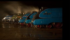 The great gathering......The Last Goodby. (alanpeacock2) Tags: mallard trains steam smoke night reflections red green blue black bittern unionofsouthafrica dominionofcanada dwightdeisenhower steamengine sirnigelgresley locomotive
