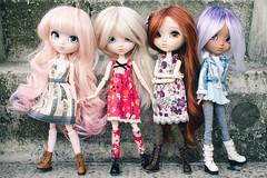 Four Seasons of Cute (Aienhime) Tags: pullip doll custom groove mio makeitown mocha mikiyochii obitsu rewigged cancanwig coolcat wig