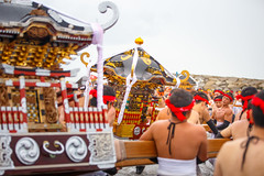 Shiofumi ritual - Ohara Hadaka Matsuri 2016 (Apricot Cafe) Tags: canonef70200mmf28lisiiusm chiba japan ohara oharahadakamatsuri festival matsuri portableshrine teamwork traditional traditionalfestival traditionaloutfit isumishi chibaken jp img652543