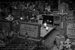 Poznan - Polen (Agentur snapshot-photography) Tags: abend abenddmmerung abendlich abendlicht abends beleuchtung bevlkerung cemetry christen christentum christians dmmerung dmmerungsaufnahme emotion europa evening friedhof friedhfe gedenken gedenkveranstaltung glauben grab grber grablicht grablichter grave graves katholiken katholisch katholizismus kerzen kirche landscape landschaft landschaften landschaftsaufnahme lichter park parklandschaft pessimistisch poland polen religion rmischkatholischekirche stadt stadtansichten stdte stadtlandschaft sterben tod tot tradition trauer trauern traurig urbanlandscape begrbnis beerdigung ritual rituale posen stadtfriedhof graveyard grabstein grabsteine trauerfall symbolfoto symbolbild gesellschaft poznan pol