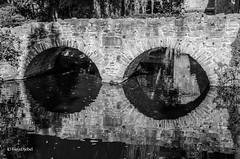 Brucken-Reflektion (tina djebel) Tags: nikon nikkor dslr d7000 aschaffenburgpark aschaffenburg schwarzweis schwarzundweis blackwhite blackandwhite brcke brcken bridge bridges spiegelung spiegelungen reflektion reflektionen reflection