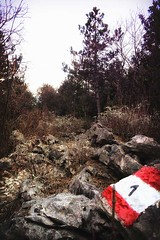 S1 Half 21, Trail 57, Ipertrail 167 km