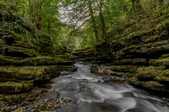 Taf Fechan Gorge (parry101) Tags: taf fechan gorge south wales landscape water outdoor long exposure nature trees merthyr tydfil blue pool pontsarn