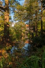 Weiher im Schntal (mrocek) Tags: 2013 aschaffenburg bayern deutschland baum bltter busch city herbst innenstadt schntal wasser panoramio776954399160078