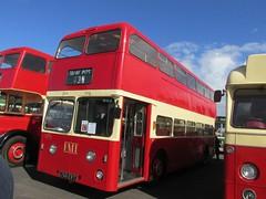 PMT 766 766EVT Donington Park Circuit attending Showbus 2016 (1280x960) (dearingbuspix) Tags: 766 preserved showbus showbus2016 pmt potteriesmotortraction 766evt