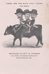 "These Are The Boys That ""Steer"" You Right (Namey McNamerson) Tags: bill bob perce william robert percy percival neaville elliott johnson indianapolis indiana livestock 1908"