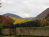 Autumn Colours (jussitoivanen) Tags: nature colors landscape tree leaves valley colours autumn natur luonto syksy värit hill