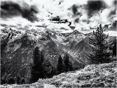 Mountain View... (Ody on the mount) Tags: anlsse berge bume fototour himmel landschaft pflanzen rahmen urlaub wolken bw monochrome sw jerzens tirol sterreich at