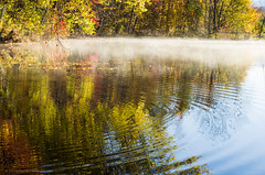 Fog on a pond, Kancamagus Highway (alohadave) Tags: autumn fall graftoncounty lostrivervalleycampground newhampshire northamerica pentaxk5 places season unitedstates woodstock smcpda1650mmf28edalifsdm