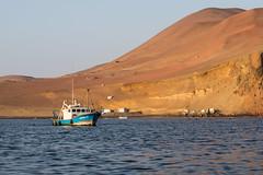 Ballestas islands (fabioresti) Tags: ballestasislands isole per bahiaparacas baia canoneos80d 55250