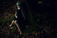 Silence (haru88) Tags: dd dds volks doll dollfie dollfiedream