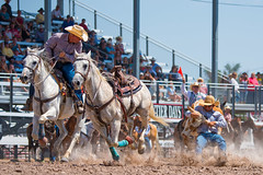 On The Clock (John C. House) Tags: everydaymiracles frontierdays rodeo steerwrestling rider johnchouse horse d810 cheyenne bulldogging nikon cowboy